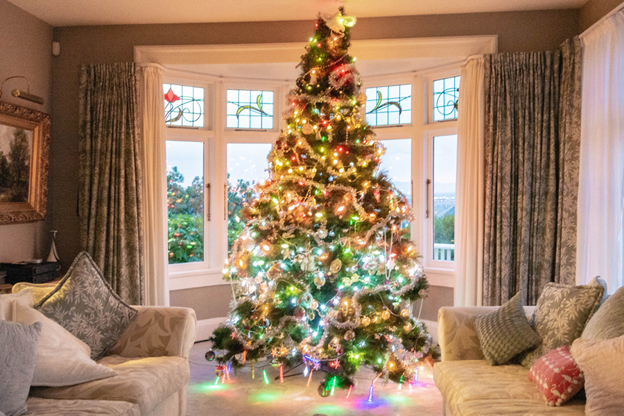 Our Christmas tree at Dyers House in Christchurch