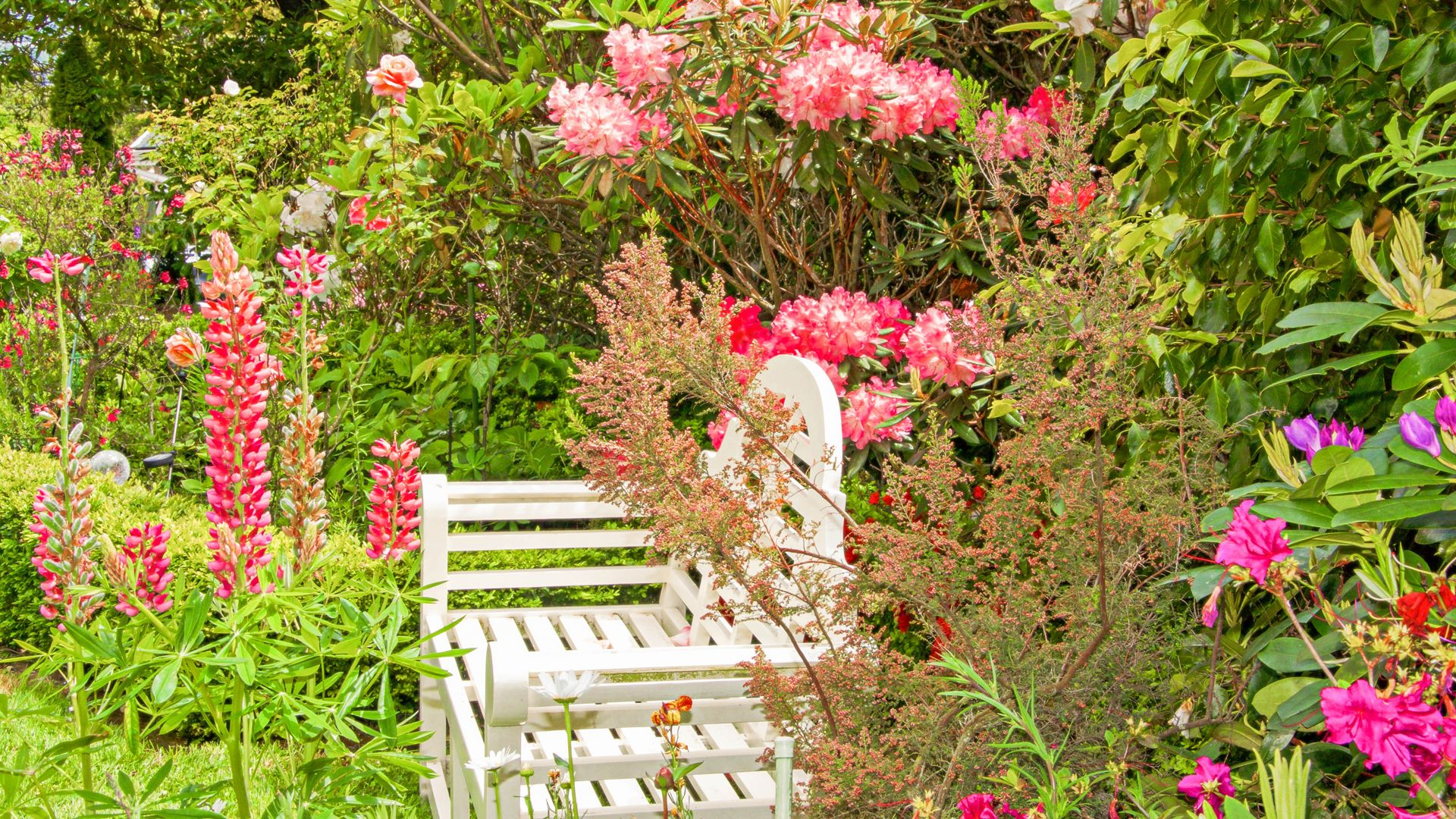 garden seat, a place to enjoy the flowers or read a book